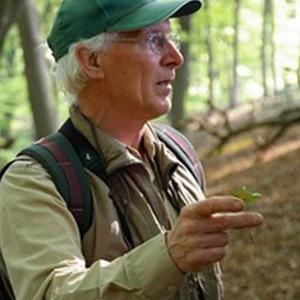 Jan Nillesen
